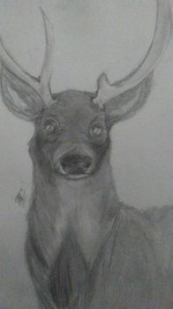 Realistic Drawing -Practice 3- by HoneyHeart23