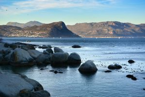 Simons Town by suffer1
