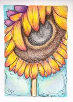 sunflower by Haeddre