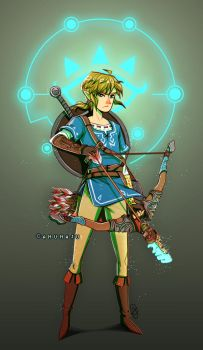 Wake up Link by amumaju