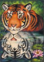 Reflections-Tiger Totem Card by stephanielynn