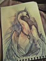 Swan sketch by meJull