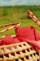 PicNic by cande-knd