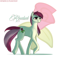 Roseluck by lengthen