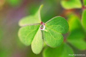 Droplet by Aheng711