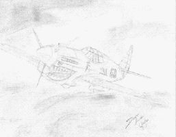 p-40 by Madhatterl7