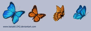 Four Butterflies by kaisaki1342