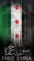 Supporting Syria ID by KINGTEAM