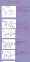Basic Animal Anatomy Tutorial by Shadow-Hime