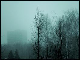 The Mist by puma-lc
