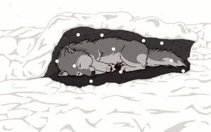 freezing wolf with snow .:C:. by MayaWolf13