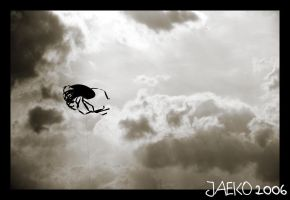 kite by jaeko