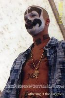 shaggy2dope gathering 06 by juggalos