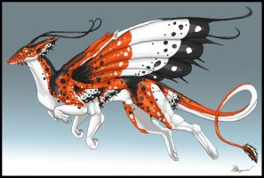 Butterfly Dragon by DragonShine1337