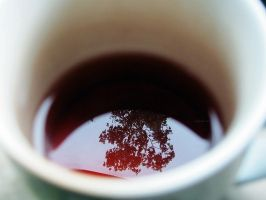 reflections over a cup of tea. by awfultosee