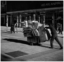 we are animals by Branimir