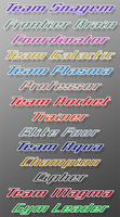 Team Names for BW-style Trainer's Pokemon by Karite-Kita-Neko