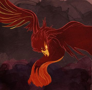 Fawkes the Phoenix by spike-kree