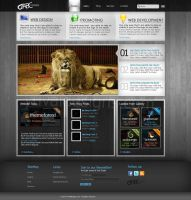 clean style website design by yuval10203