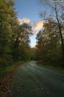 Autumn road by GiovanniSantostefano