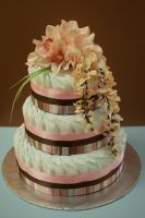 Pink and Brown Diaper Cake by annimemanga