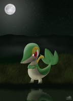 Gift - Snivy by Dragon-Minded