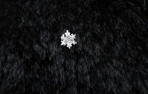 Snowflake 2009 by ormr