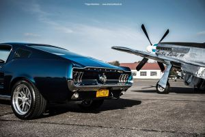 mustangs by AmericanMuscle