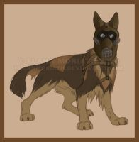 E12R1 the Belgian Shepherd by FlannMoriath