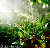 Worker nature by elidaal
