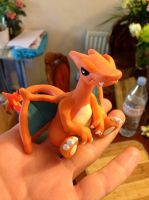 HEY, there's a Charizard on my hand by PwahLaLa