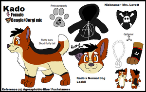 Normal Dog Kado ref by KadoAngel13