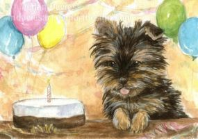 Birthday Party ACEO by Pannya