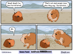 A time honored beach tradition by JoeGPcom