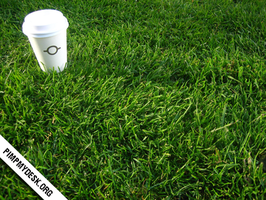 Cup in the grass - wallpack by pimpmydesk