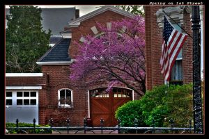 Spring on 1st Street by boron