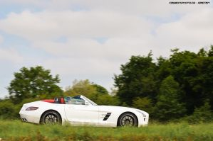 SLS Roadster by Attila-Le-Ain