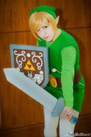 On Guard! - Toon Link by nekomatalee