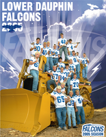 Lower Dauphin Falcons Football by dragonorion