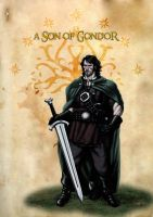 A Son of Gondor by SOLIDToM