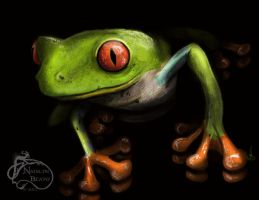 Red Eyed Tree Frog by NadilynBeato