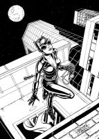 Catwoman by Golreich
