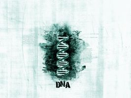 DNA by canada-man