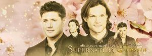 Spring Supernatural (Banner for Timeline) by Nadin7Angel