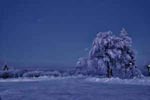 Winter night by vendula-koublova