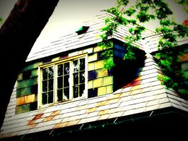 Shingled by dangstraight
