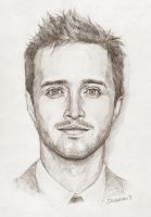 Aaron Paul by Shishkina