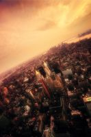 Top of the Empire State IIII by martinasdf