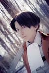 Levi Ackerman by MsDL