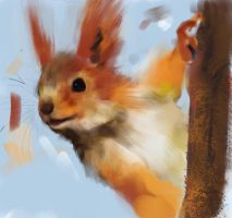 squirrel speed spaint by vincentwolf